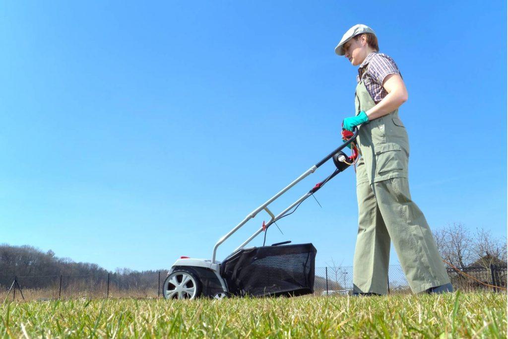 Best Lawn Scarifiers UK