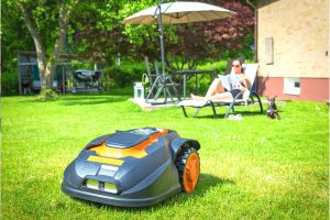 Best Robotic Lawnmowers UK