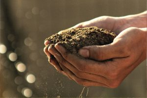 Best Soil Testing Kits UK