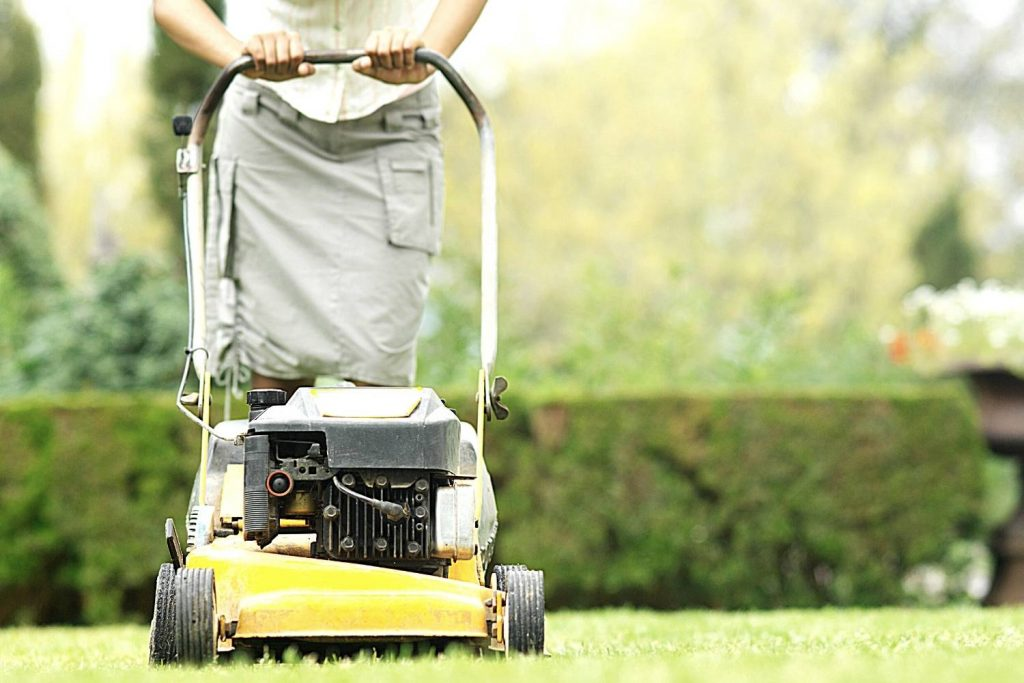 Best Petrol Lawn Mower UK