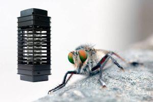 Best Fly Killer for Home UK