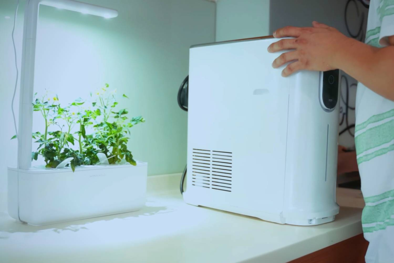 How often should you descale a hot water dispenser